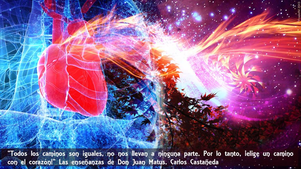 Seguir un camino de corazón : sabiduria profunda del chamanismo