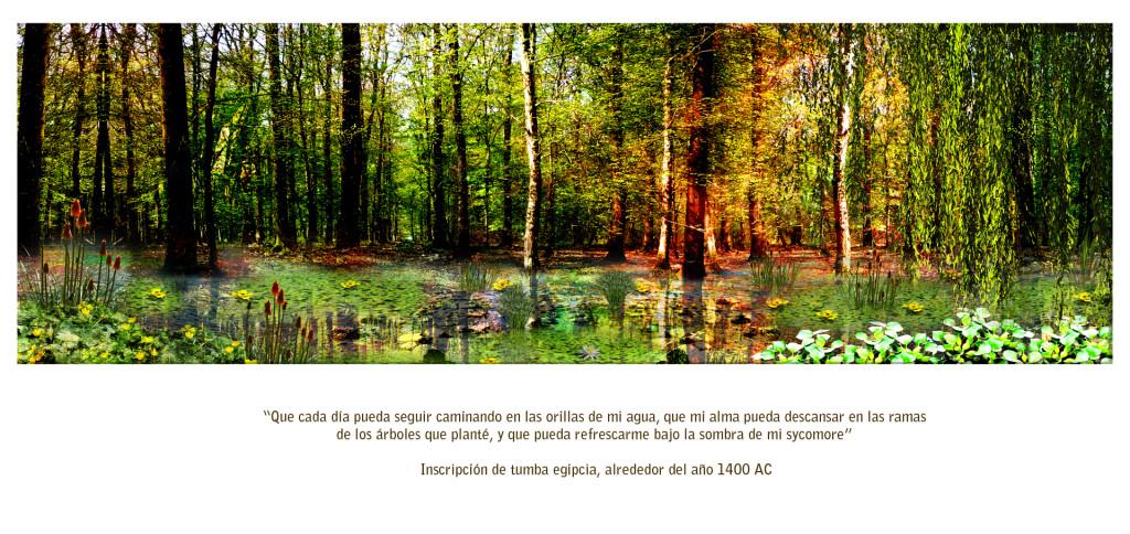 poesia_alma_amor_madre_tierra