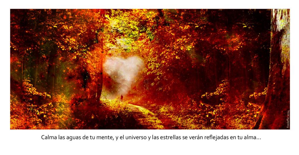 rumi_sabiduria_chamanica_y_universo