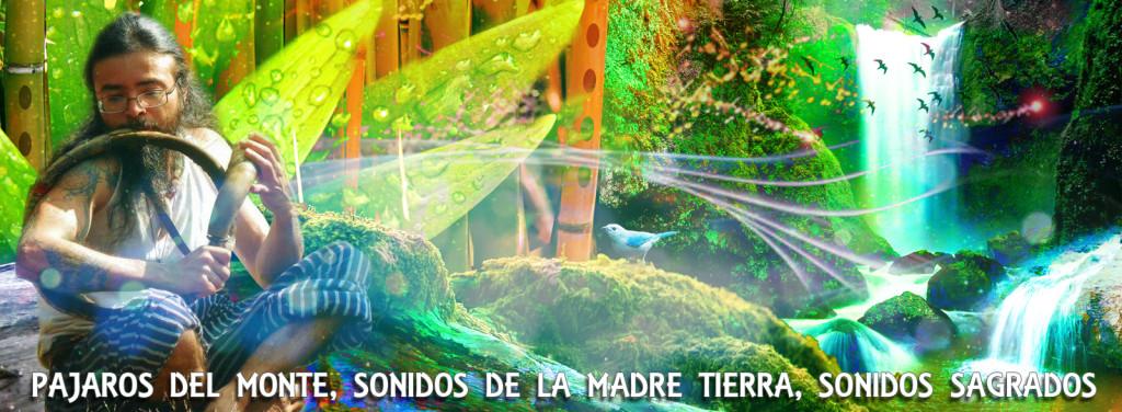 citas_chamanismo_sonidos_sagrados